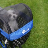 Puppy in DairyMan pet carrier zippered