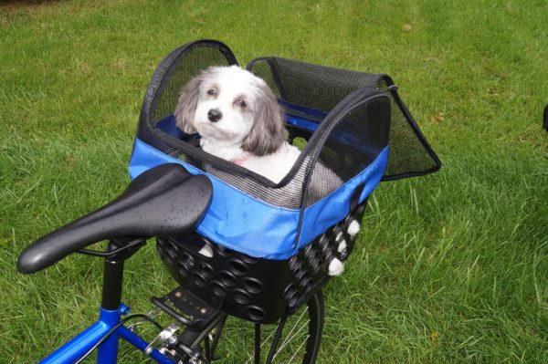 DairMan pet carrier with puppy unzipped